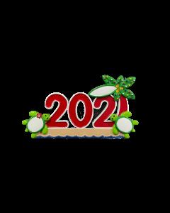 NT322: 2021 Turtle Couple