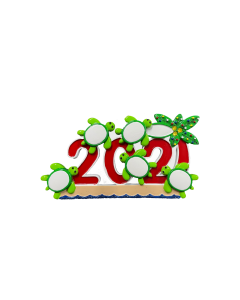 NT325: 2021 Turtles 5