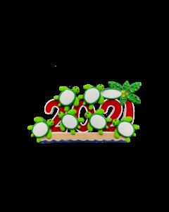 NT326: 2021 Turtles 6