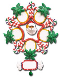 CL415: Tropical Snowflake - 5