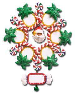 CL416: Tropical Snowflake - 6